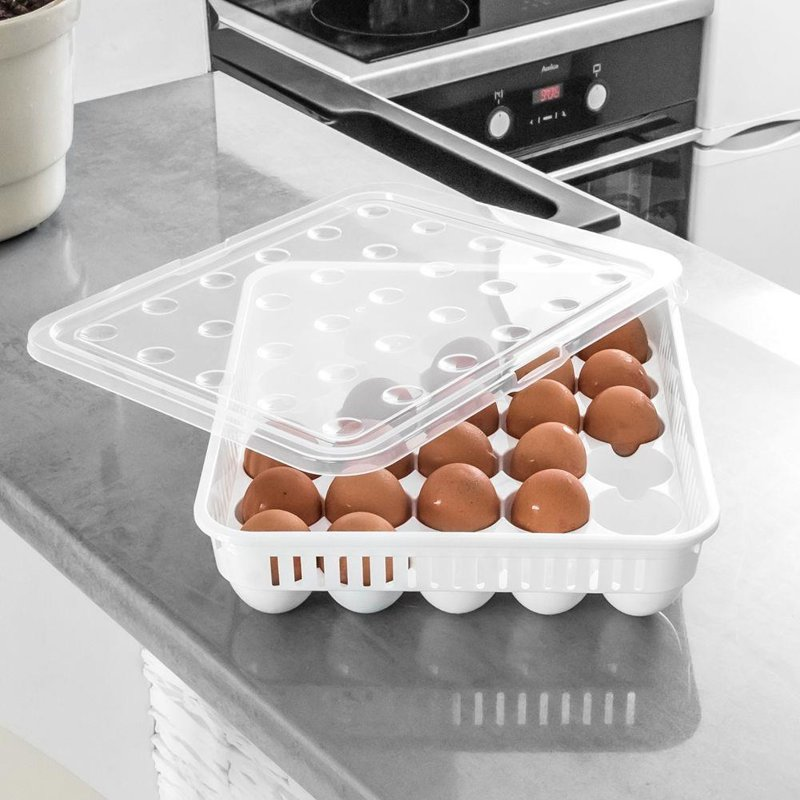 ORION Container organiser box for eggs 30 pcs